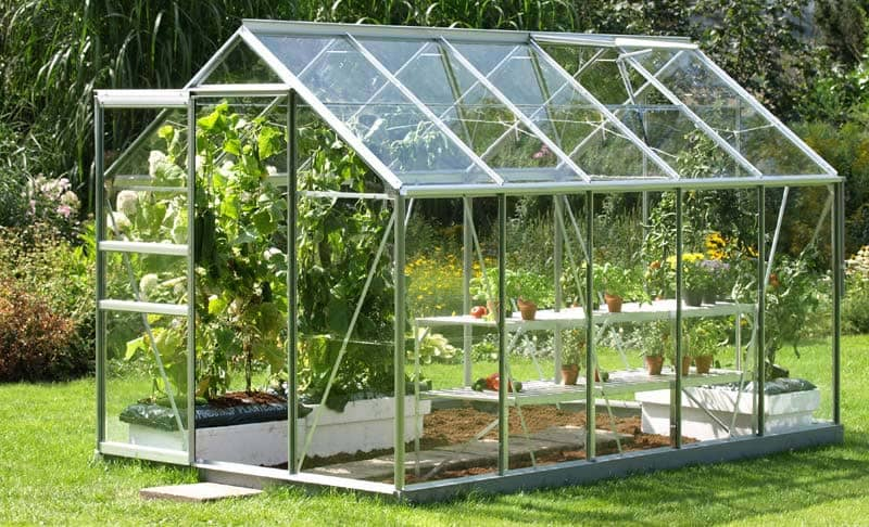 Standard Greenhouse with plants inside