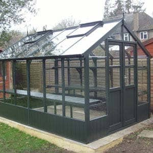 Raven greenhouse in olive
